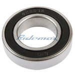 6006 Bearing