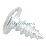 ST4x10 Tapping Screw